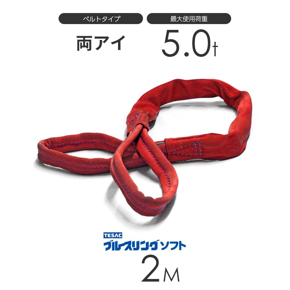 ブルースリング ソフト E型(両端アイ)5.0t × 2.0M ベルトスリング made in JAPAN