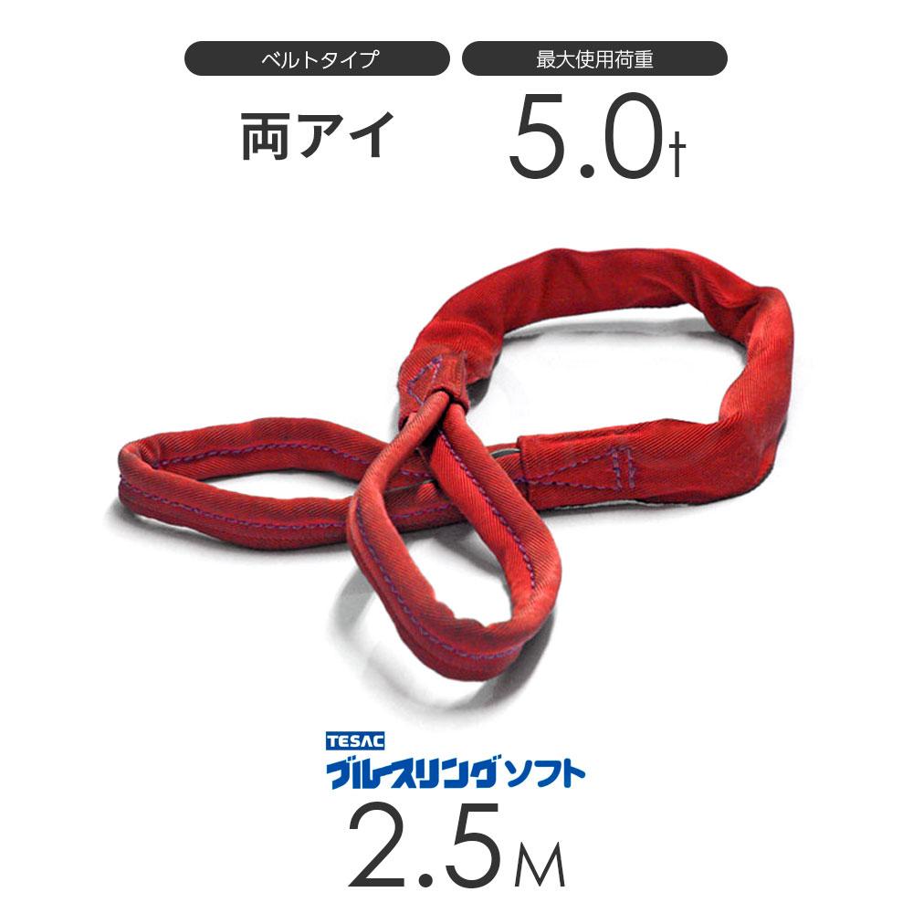 ブルースリング ソフト E型(両端アイ)5.0t × 2.5M ベルトスリング made in JAPAN