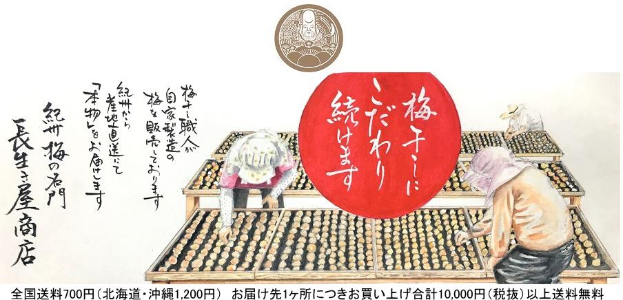 梅干専門 長生き屋:贈答用・ご家庭用・梅製品等の紀州梅干しを本場和歌山からお届けします。