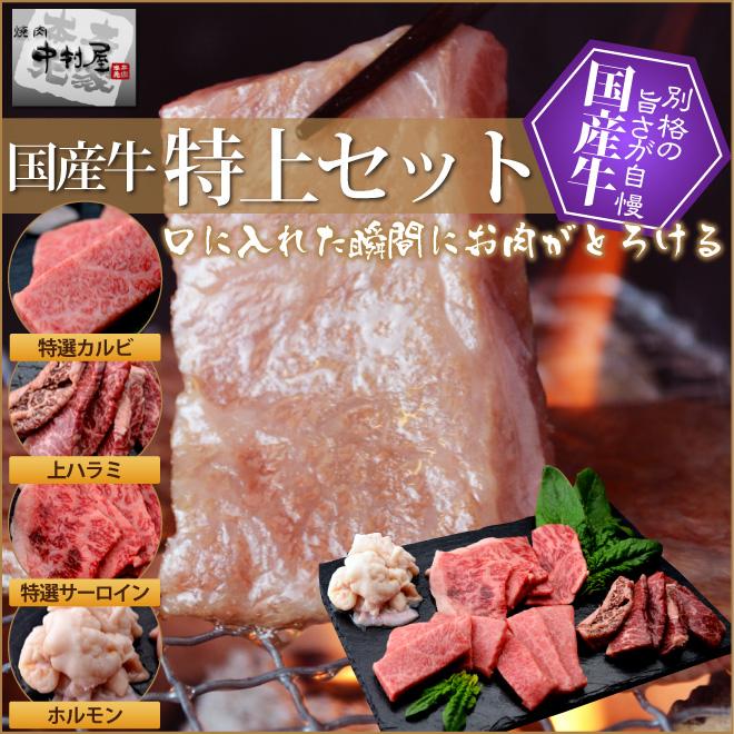 お中元 ギフト 内祝い 牛肉 国産牛 特上セット 特上カルビ200g 特上ロース200g 上ハラミ200g ホルモン300g 焼肉セット バーベキューセット