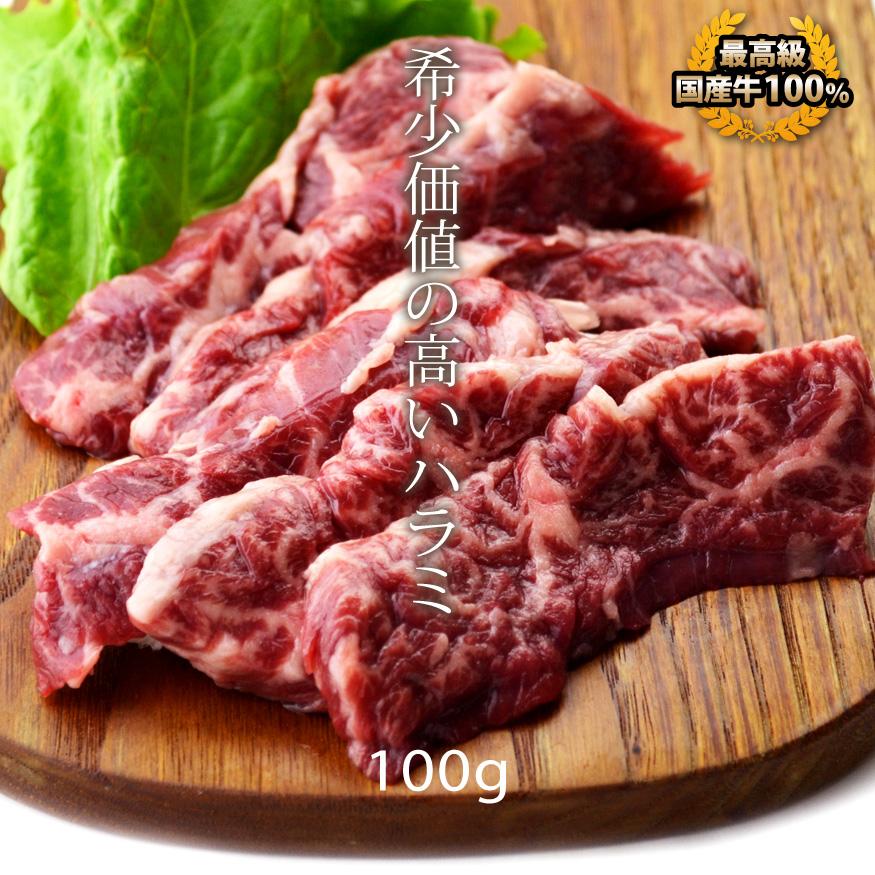 敬老の日 内祝 ギフト プレゼント 日本最大級の品揃え 誕生日 引き出物 牛肉 横隔膜 国産牛 焼肉 バーベキュー 100g ハラミ