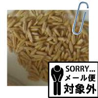 えん麦(殻つき)2kg  うさぎ モルモット チンチラ テグーのおやつ うさぎの牧草  牧草  市場  市場 牧草