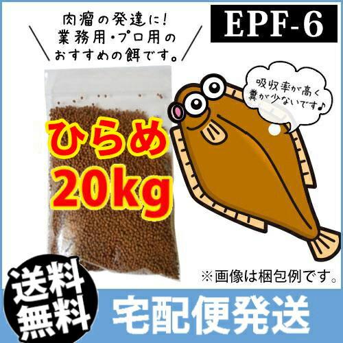 (メーカー直送)日清丸紅飼料ひらめEPF6(浮上性)20kg/コイのごはん 熱帯魚の餌 アロワナのエサ(金魚小屋-希-福岡)