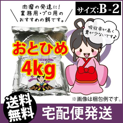 (* Delivery) otohime B2 (particles) 4 kg of GuppY fry of medaka, oryzias latipes and rice bait bait (goldfish hut-Fukuoka)