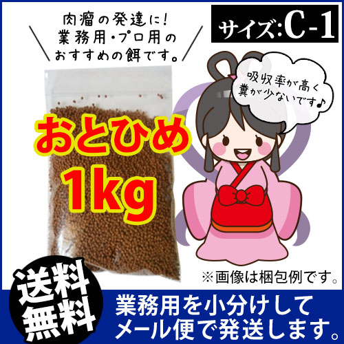 (※メール便K)日清丸紅飼料おとひめC1(0.58~0.91mm)1kg/沈降性 メダカのごはん 稚魚の餌 グッピーのエサ(金魚小屋-希-福岡)