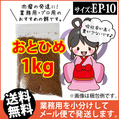 (※メール便K)日清丸紅飼料おとひめEP10(10~8.0mm)1kg/沈降性 コイのごはん 熱帯魚の餌 アロワナのエサ(金魚小屋-希-福岡)