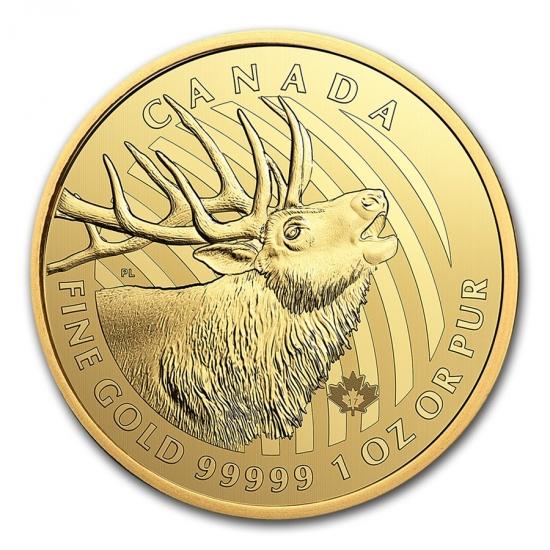 新品未使用 2017年 カナダ アカシカ 金貨 1オンス ハードケース入り
