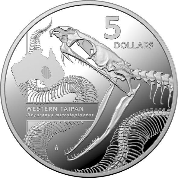 2020 オーストラリア オーストラリアにいる危険生物の内部:ナイリクタイパン 5ドル銀貨 1オンス プルーフ 箱とクリアケース付き 新品未使用