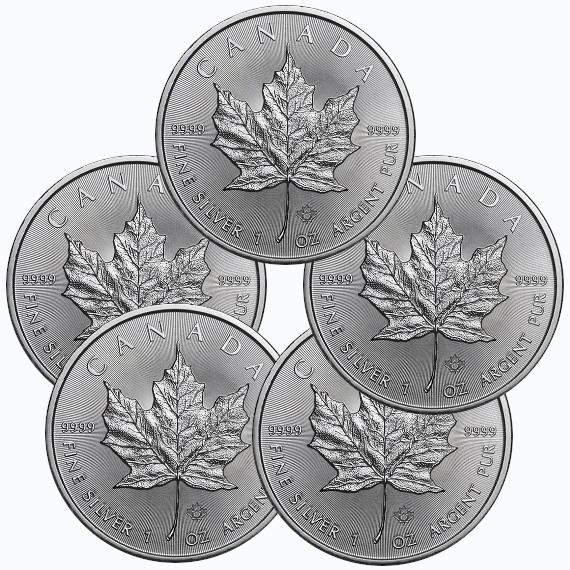 2019 カナダ メイプルリーフ銀貨 1オンス 5枚セット 38mmクリアーケース付き 新品未使用
