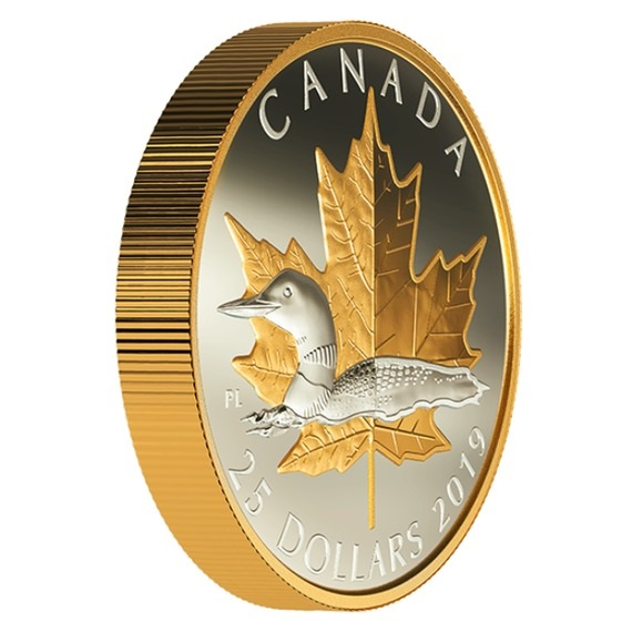 2019 カナダ 古びない図柄:ハシグロアビ 銀貨 1オンス 金メッキピエフォー(厚手型) プルーフ 箱とクリアケース付き 新品未使用