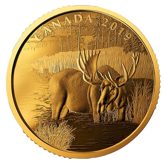 2019 カナダ カナダのヘラジカ 99.999%金貨 1オンス プルーフ 箱とクリアケース付き 新品未使用