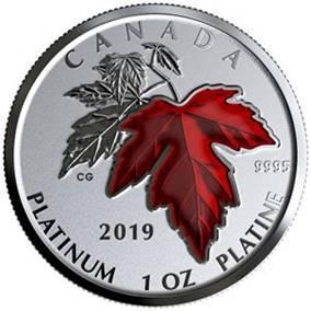 2019 カナダ 永遠のメープルリーフ プラチナ貨 1オンス 反転プルーフ 箱とクリアケース付き 新品未使用