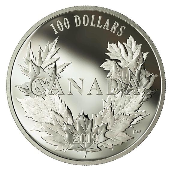 2019 カナダ カナダのサトウカエデ 銀貨 10オンス プルーフ 箱とクリアケース付き 新品未使用
