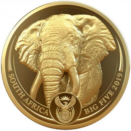 2019 南アフリカ エレファント 50ランド金貨 1オンス プルーフ クリアケース付き 新品未使用