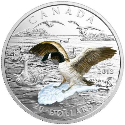 新品未使用 2018 カナダ 3Dグース銀貨 1オンス 箱とクリアーケース付き