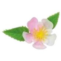 造花 ミニ桜 DK-51 1000入【取り寄せ商品·即納不可】
