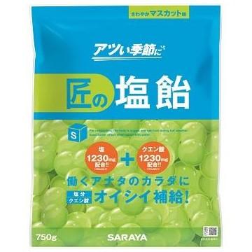 匠の塩飴 マスカット味 750g×10袋入●ケース販売お徳用