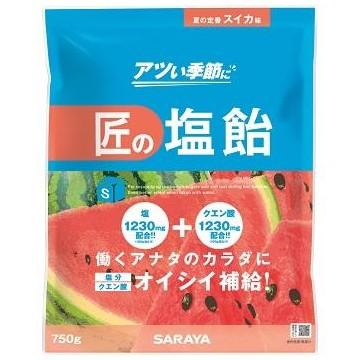 匠の塩飴 スイカ味 750g×10袋入●ケース販売お徳用