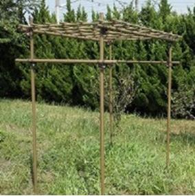 【送料無料】果樹棚セット 積水樹脂 フルーツパーゴラ Mタイプ