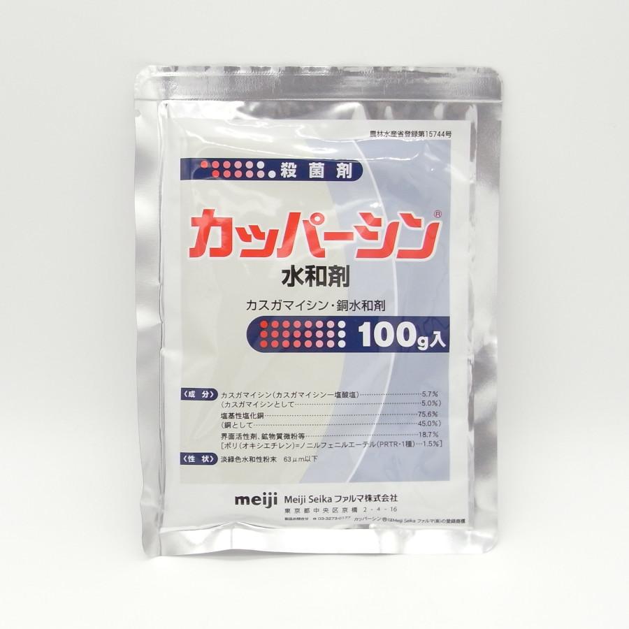 新着セール 4袋までメール便 送料220円 対応可能 100g カッパーシン水和剤 期間限定特価品