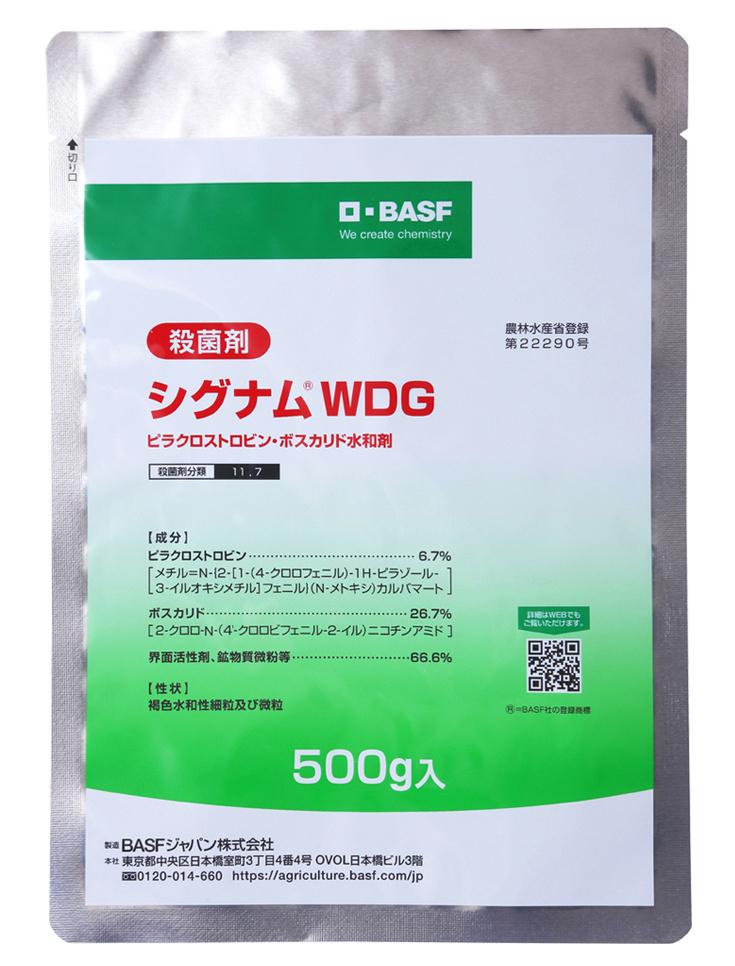 ストロビン系混合殺菌剤 最安値挑戦 シグナムWDG セール開催中最短即日発送 500g