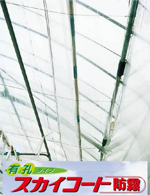 【送料無料】農PO タキロンシーアイ スカイコート防霧穴有 幅300cm×厚み0.075mm 100m原反