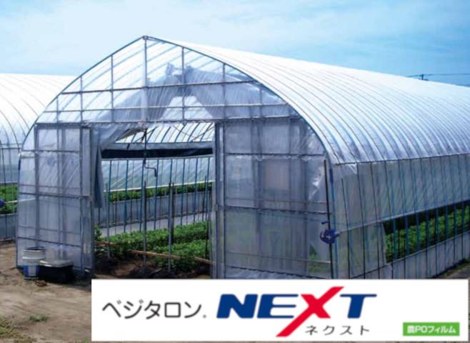 ベジタロンNEXT 練込み型農POフィルム 住化積水フィルム 農PO ベジタロンネクスト 0.1mmX400cmX100m原反 シングルロール