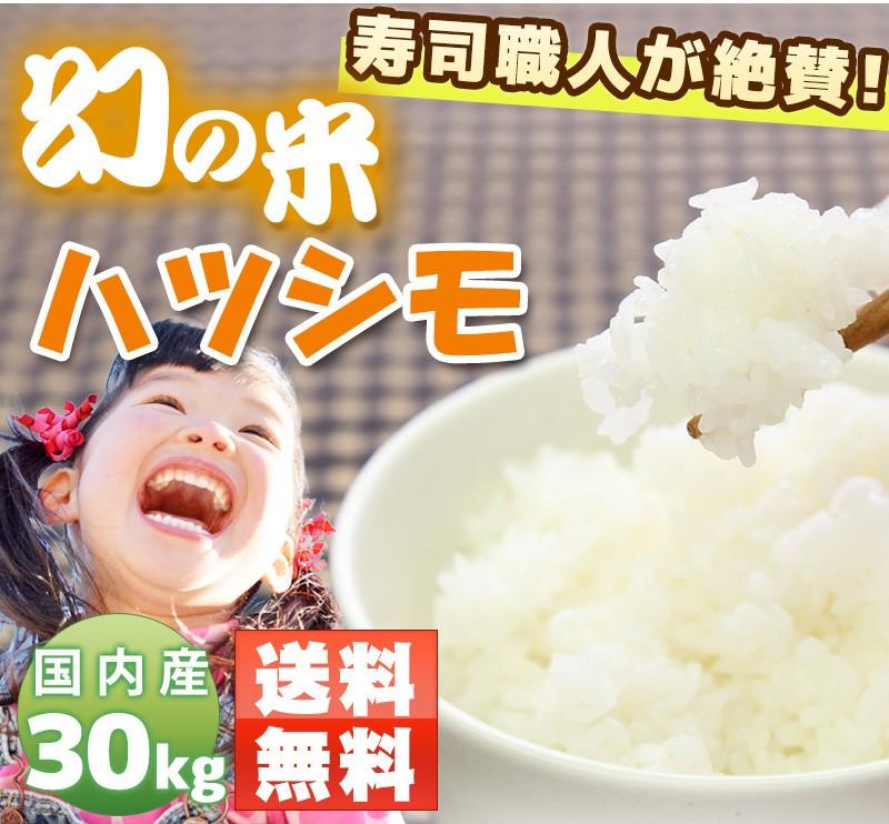 【送料無料】ハツシモ(はつしも) 米30kg 岐阜県産 30年産 玄米/分づき/精米無料 お米職人が厳選