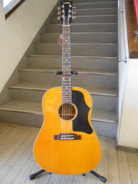 新品 店頭展示品 Headway(ヘッドウェイ)アコースティックギター HJ-35 ソフトケース付!