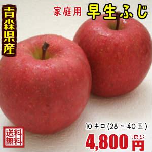 安心 安全の青森県産りんごを高品質でお届け おすすめ 迅速な対応で商品をお届け致します 発送は10月10日頃から 青森りんご☆送料無料☆家庭用早生ふじ10キロ28~40玉