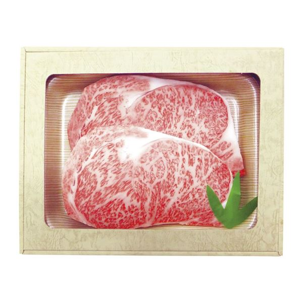 飛騨牛 ロースステーキ 18630004【直送品】【Y便】