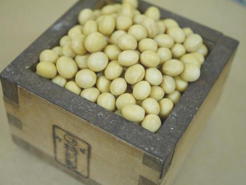 与え 令和2年産 新作 大人気 国産大豆 里のほほえみです 3kg 里のほほえみ 味噌用大豆