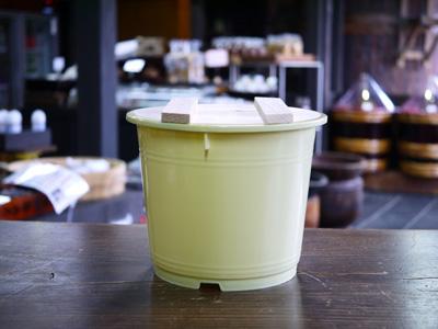 味噌仕込み用のおためしサイズのポリ樽 超歓迎された 4~5kg用です 期間限定お試し価格 フタはこだわりの檜 ヒノキ 4kg用 材を使用 味噌用ポリ樽