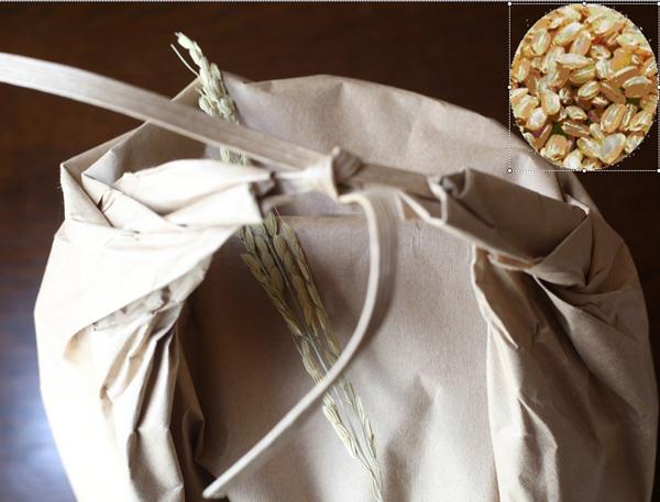令和3年産 新物 完全無農薬 100%有機肥料で生育したこだわりのコシヒカリ玄米です メーカー直送 無農薬 有機肥料 2020秋冬新作 30kg コシヒカリ 玄米