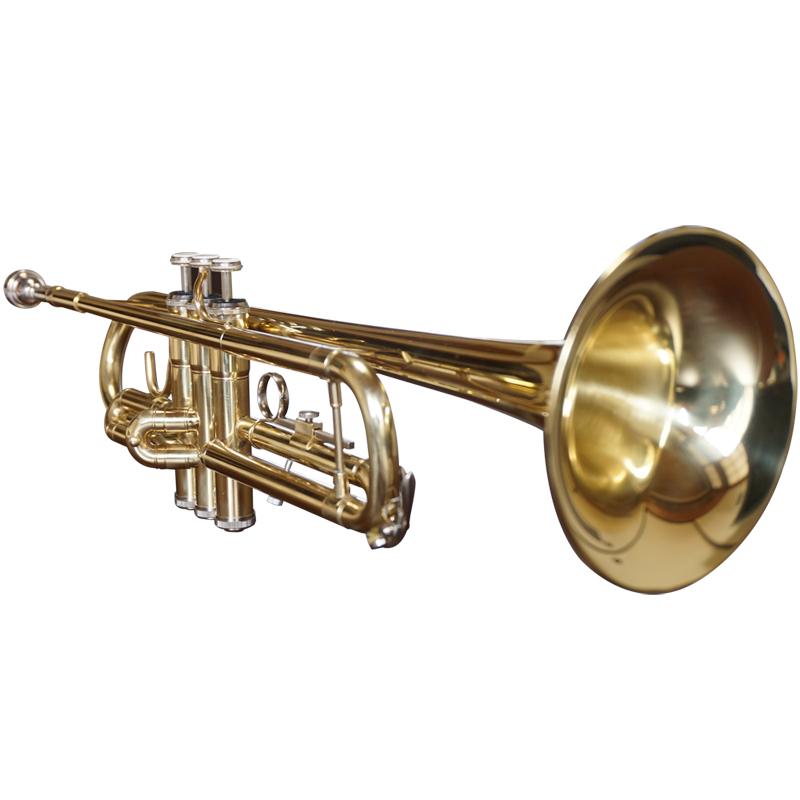 トランペット 初心者入門セット 本体/マウスピース/ケース 管楽器 trumpet