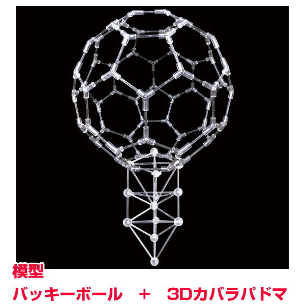 模型 バッキーボール(組立式)+3Dカバラパドマ(組立済)