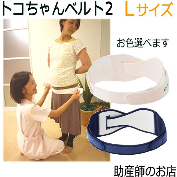 Toko belt 2L (とこちゃん ベルト)