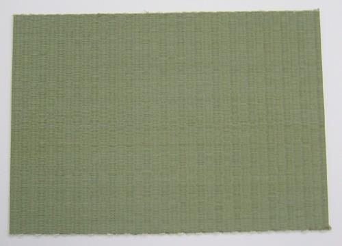 畳表替え エコ表ヘリ付きエコ目積107(熊本産) 半畳物