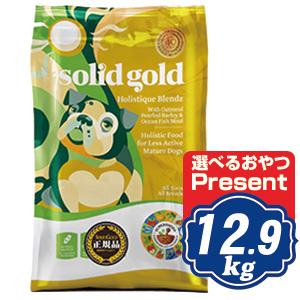 ソリッドゴールド ホリスティックブレンド 12.9kg 老犬・成犬用ドッグフード 【正規品】SOLID GOLD