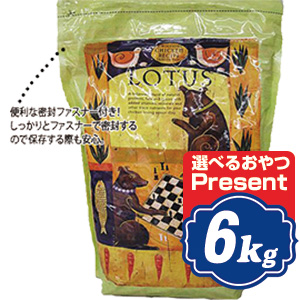 ロータス シニア チキンレシピ 中粒 6kg Lotus ドッグフード 【正規品】