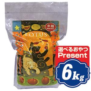 ロータス パピー チキンレシピ 小粒 6kg Lotus ドッグフード 【正規品】