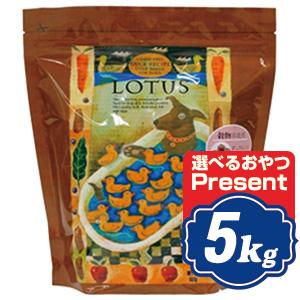 ロータス グレインフリー ダックレシピ 小粒 5kg Lotus ドッグフード 【正規品】