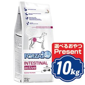 FORZA10 ドッグ インテシティナルアクティブ 10kg フォルツァディエチ INTESTINAL active ドッグフード  【正規品】