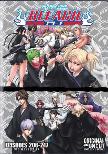 新品北米版DVD!BLEACH 【14】 第206話~217話!