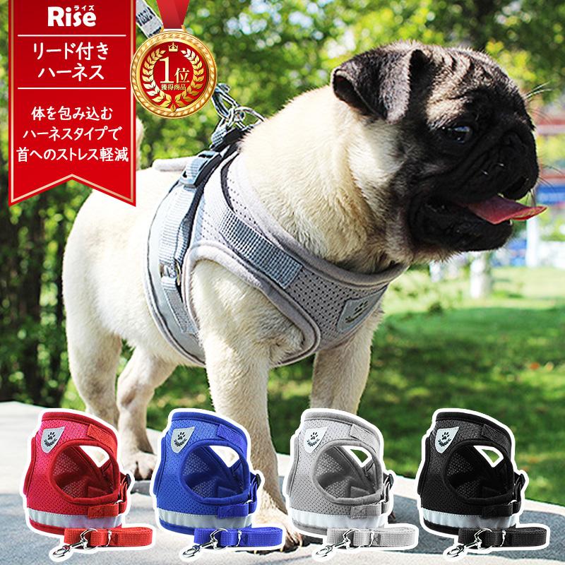 4色 ハーネス 小型犬 可愛い 中型犬 大型犬 犬 ペット用 新作製品、世界最高品質人気! 犬用 贈呈 おさんぽ リード付き ペット用品 無地 グッズ 愛犬 お散歩グッズ バックル