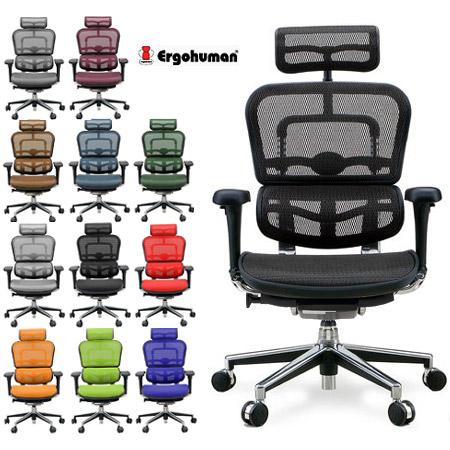 Latest Ergohuman Basic Hybrid EH HAM High Performance Mesh Chair Office
