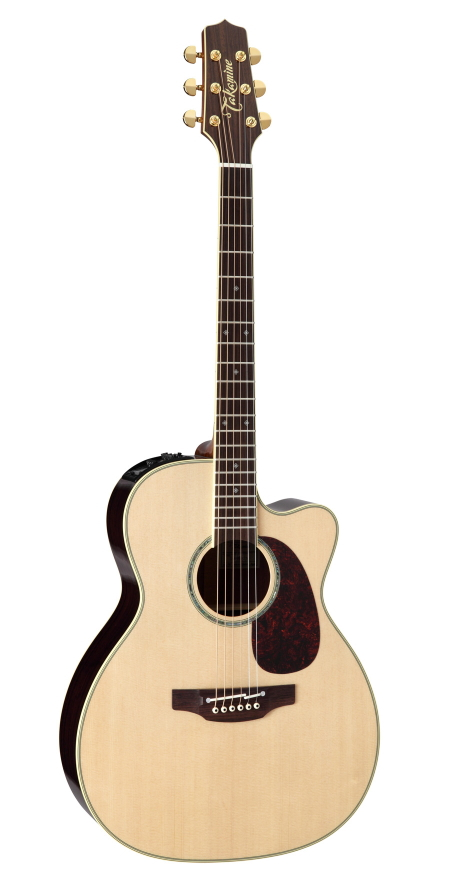 Takamine / タカミネ エレアコギター DMP761C N (ハードケース付)