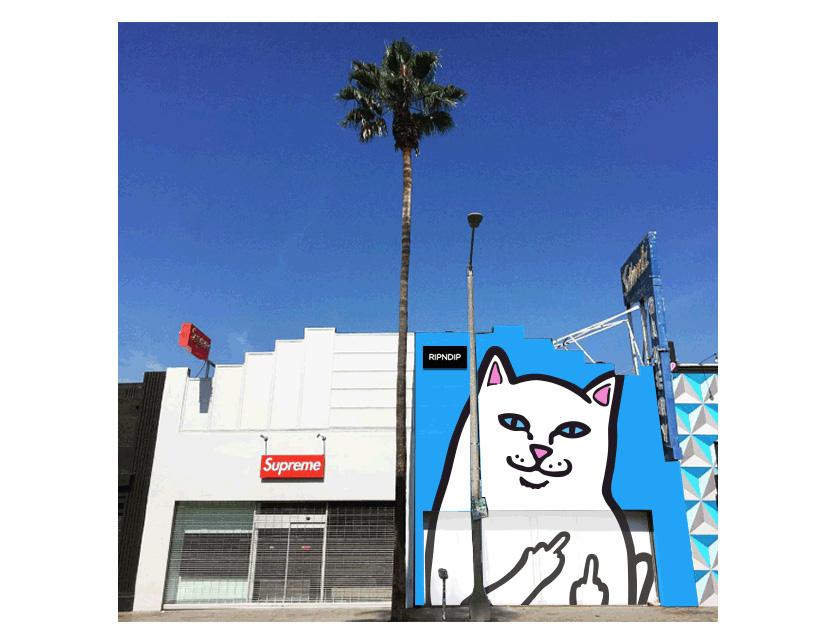RIPNDIP リップンディップキャップストラップバック hat ASS cat cat goods Rip N Dip RND1262