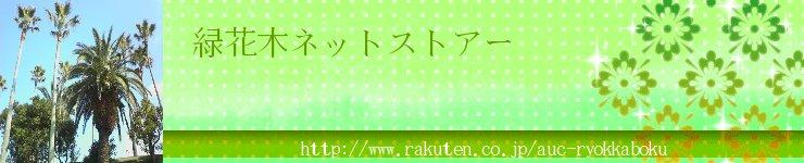 緑花木ネットストアー:ココスヤシ、ドラセナ、洋風庭木お任せ下さい!
