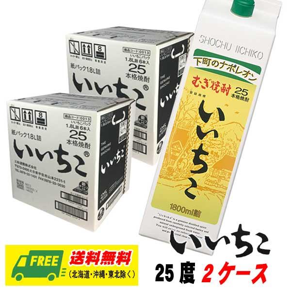 北海道 送料無料新品 沖縄 東北6県は別途送料がかかります 麦焼酎 いいちこ 2020モデル 1800mlパック 2ケース 25度 地域限定送料無料 12本